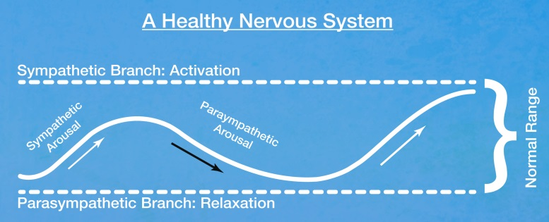 A healthy Nervous System